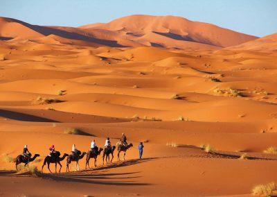 12 Days tour from Casablanca via Fez Marrakech and Sahara Desert